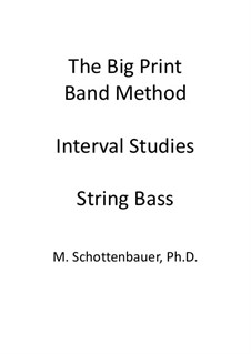 Interval Studies: String bass by Michele Schottenbauer