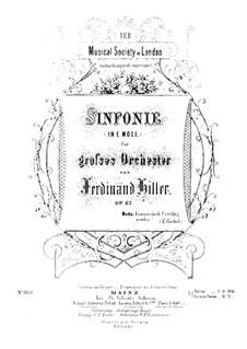 Symphony in E Minor, Op.67: Movement I by Ferdinand von Hiller