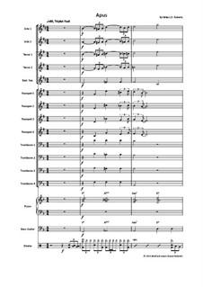 Apus: For big band by Michael J.D. Roberts