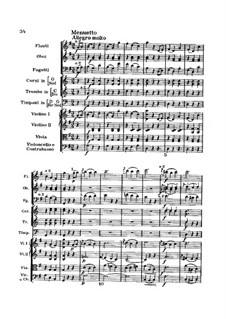 Symphony No.94 in G Major 'The Surprise', Hob.I/94: Movement III by Joseph Haydn