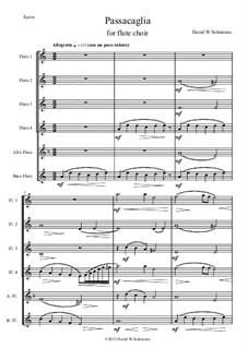 Passacaglia: For flute choir by David W Solomons