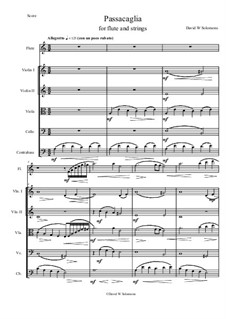Passacaglia: For flute and strings by David W Solomons