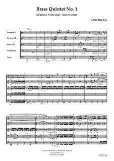 Brass Quintet No.1 – Sonatina Vinta dagl' Anacronismi, B41: Brass Quintet No.1 – Sonatina Vinta dagl' Anacronismi by Colin Bayliss
