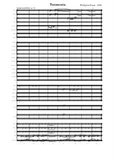 Tormenta: Tormenta by Welligton Sousa