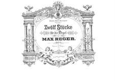 Twelve Pieces for Organ, Op.65: Pieces No.1-6 by Max Reger