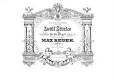 Twelve Pieces for Organ, Op.65: Pieces No.7-12 by Max Reger