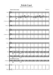 Polish carol for School Orchestra: Polish carol for School Orchestra by folklore