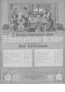 An Mein Heimatland: An Mein Heimatland by Ferdinand Kollmaneck
