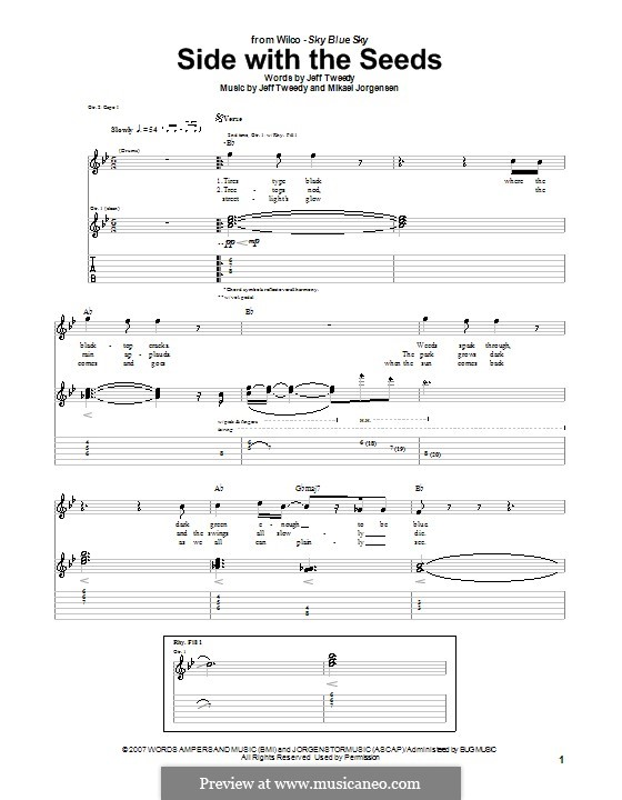 Side with the Seeds (Wilco): For guitar with tab by Jeff Tweedy, Mikael Jorgensen