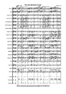 Wir sind allerbester Laune: Concert band by Thomas Hans Graf
