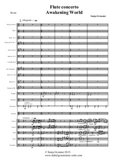 Flute concerto 'Awakening World': For solo and symphonic orchestra by Sonja Grossner