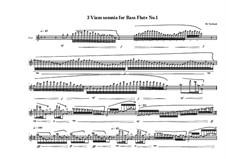 3 viam somnia for bass flute: No.1, MVWV 756 by Maurice Verheul