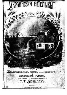 Ukrainski meteliki No.2 - Ukrainian folk songs: Ukrainski meteliki No.2 - Ukrainian folk songs by folklore
