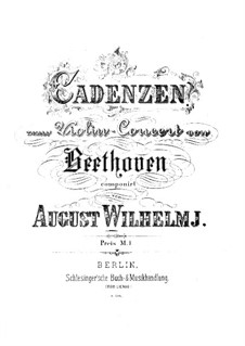Concerto for Violin and Orchestra in D Major, Op.61: Cadenzas by Ludwig van Beethoven