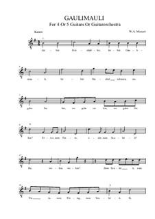 Gaulimauli: G-Dur by Wolfgang Amadeus Mozart