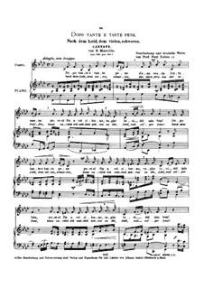 Dopo tante e tante pene (Cantata): Low voice in F Minor by Benedetto Marcello
