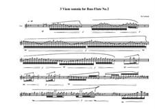 3 viam somnia for bass flute: No.2, MVWV 757 by Maurice Verheul