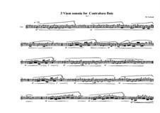 3 Viam somnia for Contrabass flute: No.1, MVWV 771 by Maurice Verheul