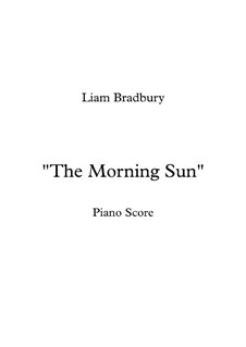 The Morning Sun: The Morning Sun by Liam Bradbury