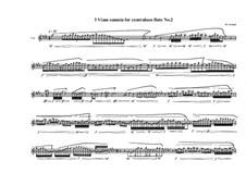 3 Viam somnia for Contrabass flute: No.2, MVWV 772 by Maurice Verheul