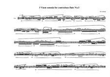 3 Viam somnia for Contrabass flute: No.3, MVWV 773 by Maurice Verheul