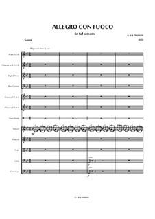 Allegro Con Fuoco: Allegro Con Fuoco by Alexey Kaleynikov