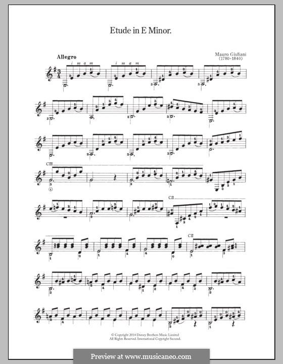 Twenty-Four Etudes for Guitar, Op.100: Etude No.13 by Mauro Giuliani