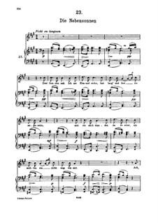 No.23 Die Nebensonnen (The Phantom Suns): For high voice and piano by Franz Schubert