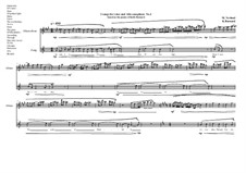 2 songs for voice and Alto saxophone based on the poems of Keith Barnard: Song No.2, MVWV 789 by Maurice Verheul