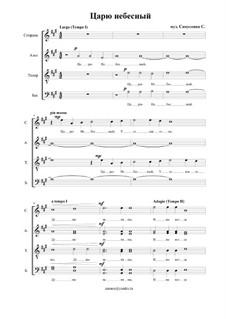 Царю Небесный (концерт): Царю Небесный (концерт) by Sergey Samusenko