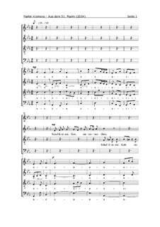 Aus dem 51. Psalm (2004): Aus dem 51. Psalm (2004) by Martin Klemenz