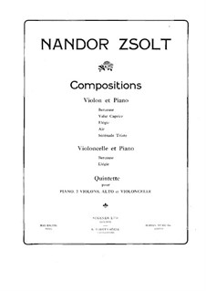Piano Quintet in B Flat Minor: Full score by Nándor Zsolt