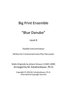 On the Beautiful Blue Danube, Op.314: For flexible instrumentation by Johann Strauss (Sohn)