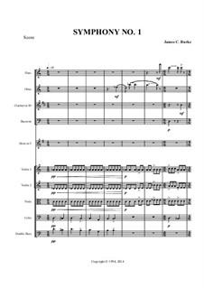 Symphony No.1 (2014 Version): Symphony No.1 (2014 Version) by James Burke