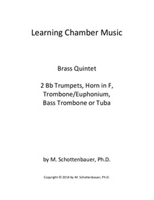 Learning Chamber Music: Brass quintet by Michele Schottenbauer