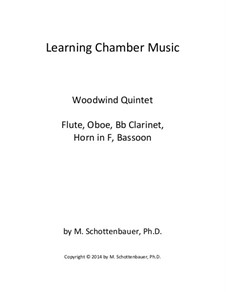 Learning Chamber Music: Woodwind quintet by Michele Schottenbauer