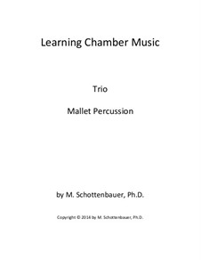 Learning Chamber Music: Mallet percussion trio by Michele Schottenbauer