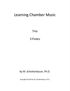 Learning Chamber Music: Flute trio by Michele Schottenbauer