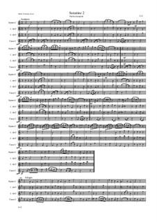 Sonatine 2: Sonatine 2 by Friedrich Gross