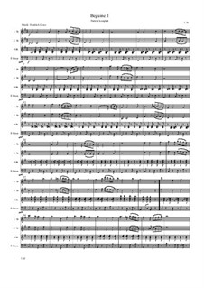 Beguin 1: Beguin 1 by Friedrich Gross