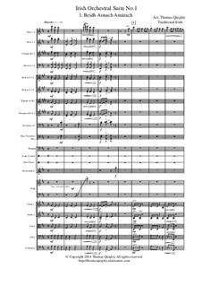 Irish Orchestral Suite No.1: Movement I by folklore