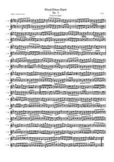 Blockflötenduett Nr.3: Blockflötenduett Nr.3 by Friedrich Gross