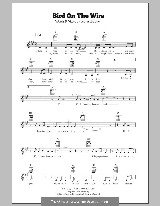 Bird On The Wire Bird On A Wire By L Cohen Sheet Music On Musicaneo