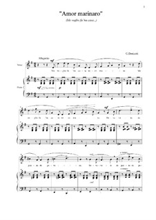 Me voglio fa 'na casa: G Major by Gaetano Donizetti