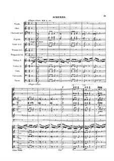Symphony No.2 in C Major, Op.61: Movement II by Robert Schumann