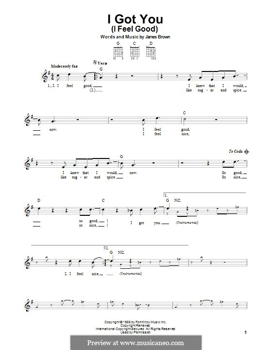 I Got You (I Feel Good): For guitar with tab by James Brown