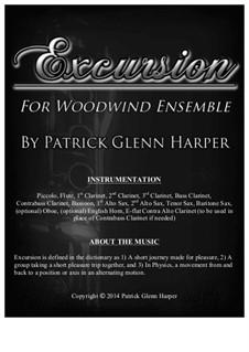 Excursion: For woodwind ensemble by Patrick Glenn Harper