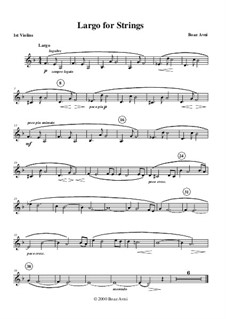 Largo for Strings: Parts by Boaz Avni