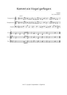 Kommt a Vogerl Geflogen (A Bird Comes Flying): Trio Trompete, Trompete, Posaune, Op.03017 by folklore