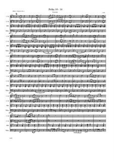 Polka 10 - 14: Polka 10 - 14 by Friedrich Gross